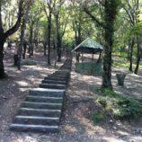 ایجاد پارک های جنگلی و ملی