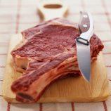 تولید کنسرو گوشتی