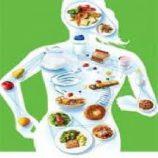 علوم تغذیه در ورزش