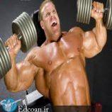 پرورش عضلات بدون استفاده از وزنه