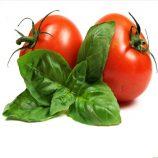 ترابری گوجه فرنگی در سردخانه